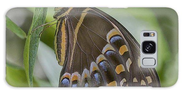 Swallowtail Galaxy Case by Anne Rodkin