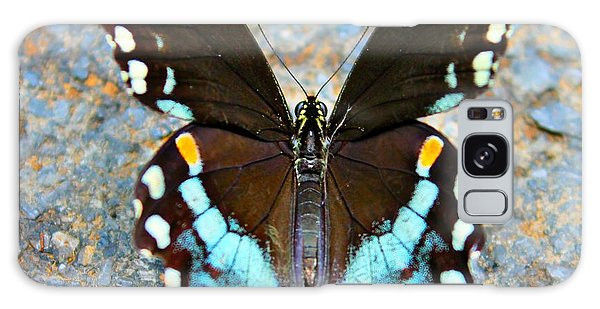 Swallowtail Beauty Galaxy Case