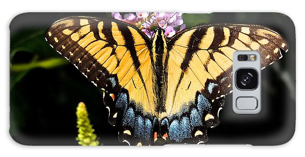 Swallowtail Beauty Galaxy Case by Eve Spring
