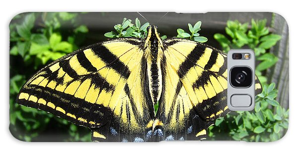 Swallowtail Butterfly Feeding Galaxy Case