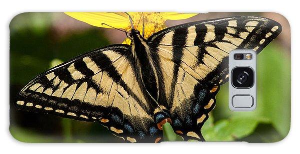 Swallowtail Butterfly Galaxy Case by Jack Bell