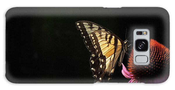 Swallowtail In The Light Galaxy Case