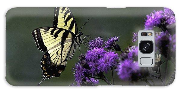 Swallowtail On Purple Galaxy Case
