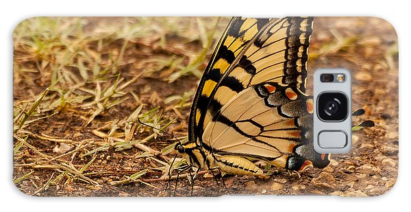 Swallowtail Galaxy Case