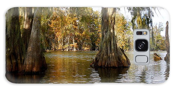 Swamp - Cypress Trees Galaxy Case