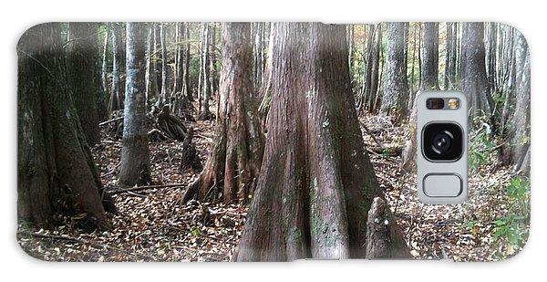 Swamp Edge Landscape Galaxy Case by D Wallace