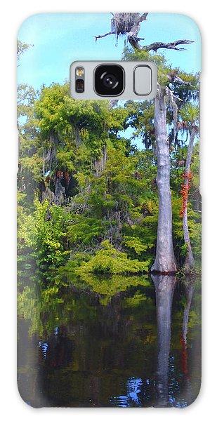 Osprey Galaxy Case - Swamp Land by Carey Chen