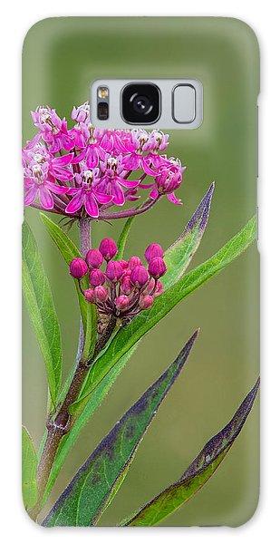Swamp Milkweed Galaxy Case