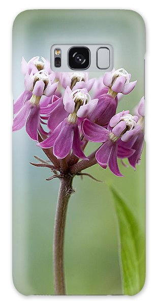 Swamp Milkweed Galaxy Case