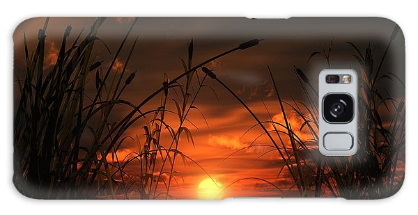 Swamp Sunset  Galaxy Case