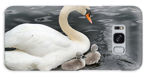 Swan And Cygnets Galaxy Case by Kathy King