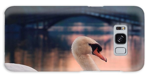 Swan Bridge Galaxy Case