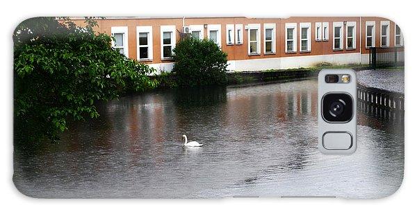 Swan In Dublin Galaxy Case