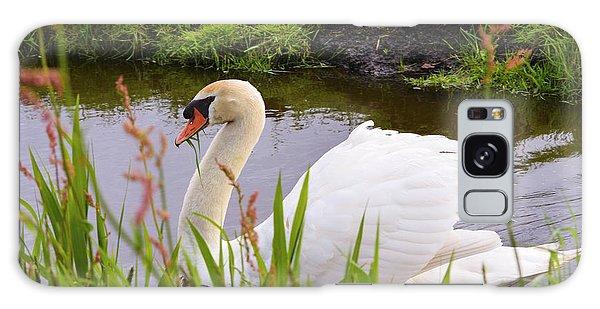 Swan In Water In Autumn Galaxy Case
