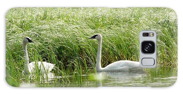 Swan Galaxy Case