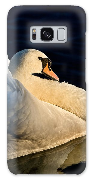 Swan On Lake Galaxy Case