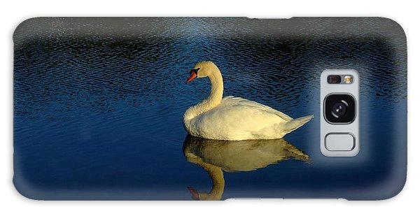Swan Reflection Galaxy Case