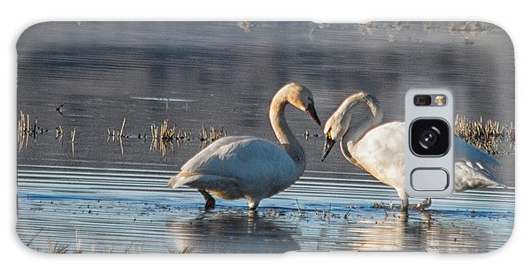 Swans In Pose Galaxy Case
