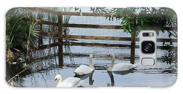 Swans In The Pond Galaxy Case by Beverly Stapleton