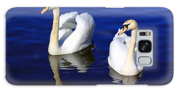 Swans On The Lake Galaxy Case
