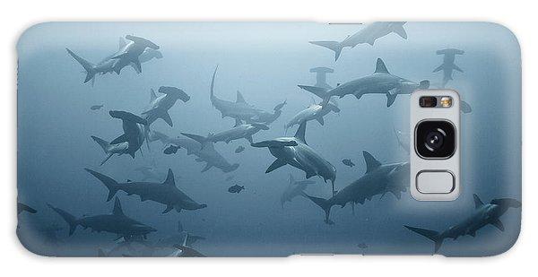 Hammerhead Shark Galaxy Case - Swarming by Alexander Safonov
