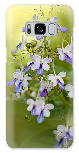 Sweet Butterfly Flowers Galaxy Case