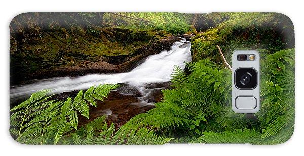 Sweet Creek Ferns Galaxy Case