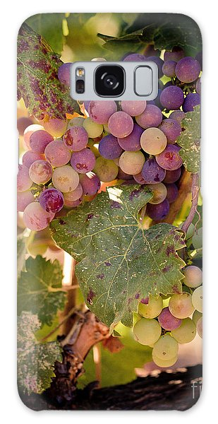 Sweet Grapes Galaxy Case