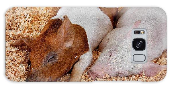 Sweet Piglets Nap Art Prints Galaxy Case by Valerie Garner