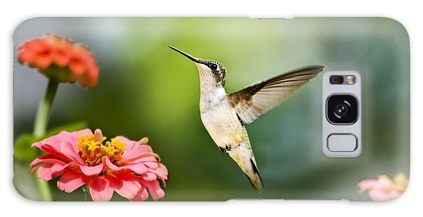 Galaxy Case featuring the photograph Sweet Promise Hummingbird by Christina Rollo