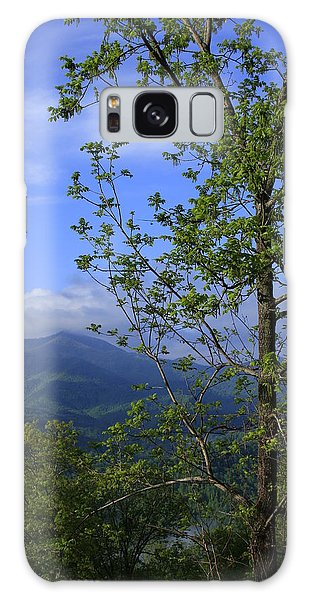 Sweet Springtime On The Blue Ridge Parkway Nc Galaxy Case by Mountains to the Sea Photo