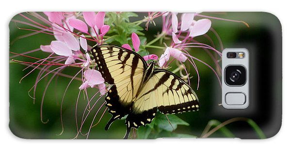 Sweet Swallowtail Galaxy Case by Living Color Photography Lorraine Lynch