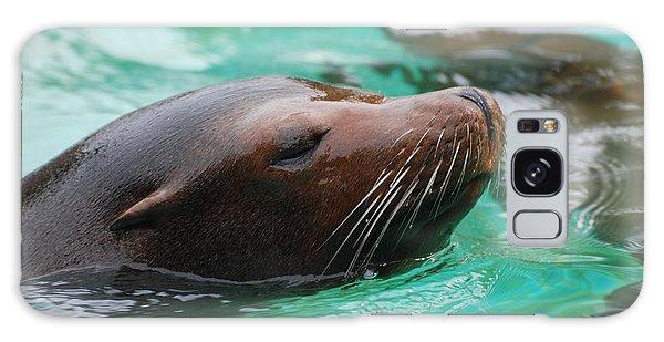 Swimming Sea Lion Galaxy Case by DejaVu Designs
