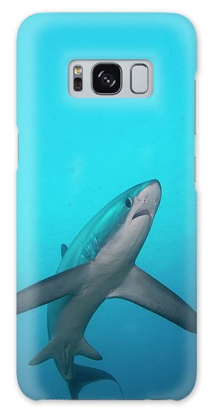 Sharks Galaxy Case - Swimming Thresher Shark by Scubazoo