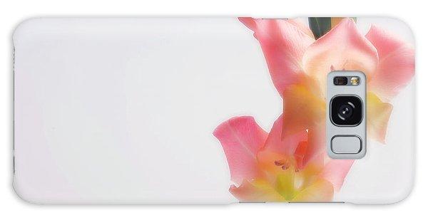 Hybrid Galaxy Case - Sword Lily (gladiolus Hybrid) by Maria Mosolova/science Photo Library