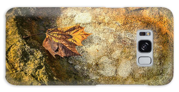 Sycamore Leaf In Ice Galaxy Case by Diana Boyd