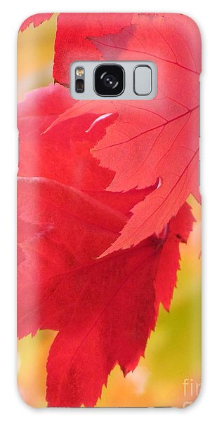 Symphony Of Autumn 22 Galaxy Case by France Laliberte