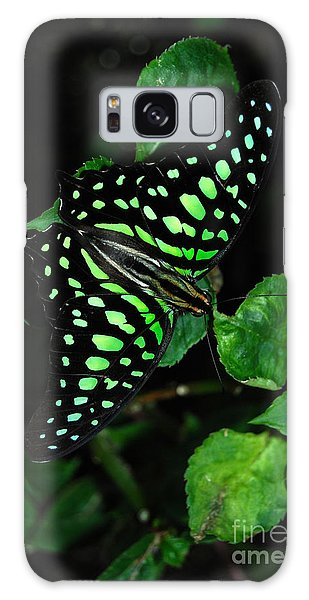 Tailed Jay Butterfly Galaxy Case