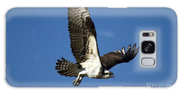 Osprey Galaxy Case - Take Flight by Mike  Dawson