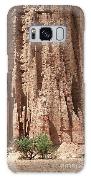 Talampaya Gorge Argentina Galaxy Case by Rudi Prott