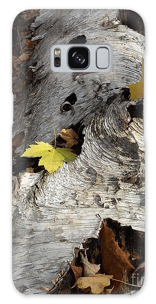 Tall Fallen Birch With Leaves Galaxy Case