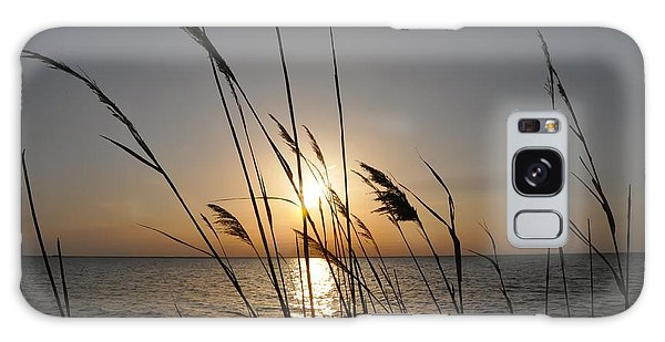 Tall Grass Sunset Galaxy Case by Bill Cannon