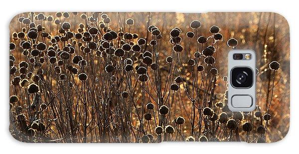 Tallgrass Morning Galaxy Case by Christopher McKenzie