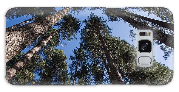 Talls Trees Yosemite National Park Galaxy Case