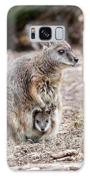 Tammar Wallaby (macropus Eugenii Galaxy Case