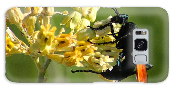 Tarantula Hawk Wasp Galaxy Case by Richard Stephen