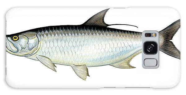 Tarpon Galaxy Case