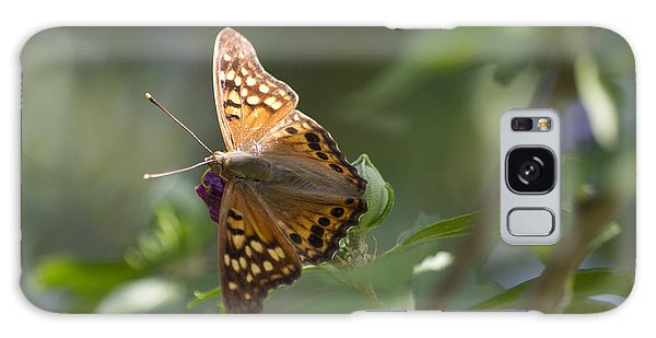 Tawny Emperor On Hibiscus Galaxy Case