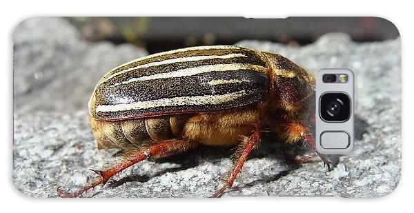 Ten-lined June Beetle Profile Galaxy Case
