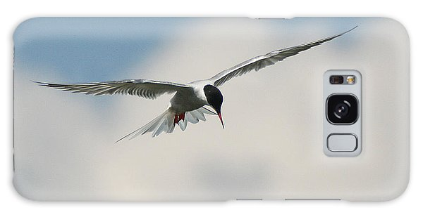 Tern In Flight Galaxy Case
